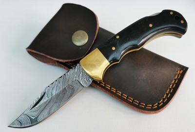 Horn Damascus Folder